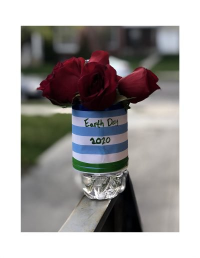 blue and white striped planter with red roses