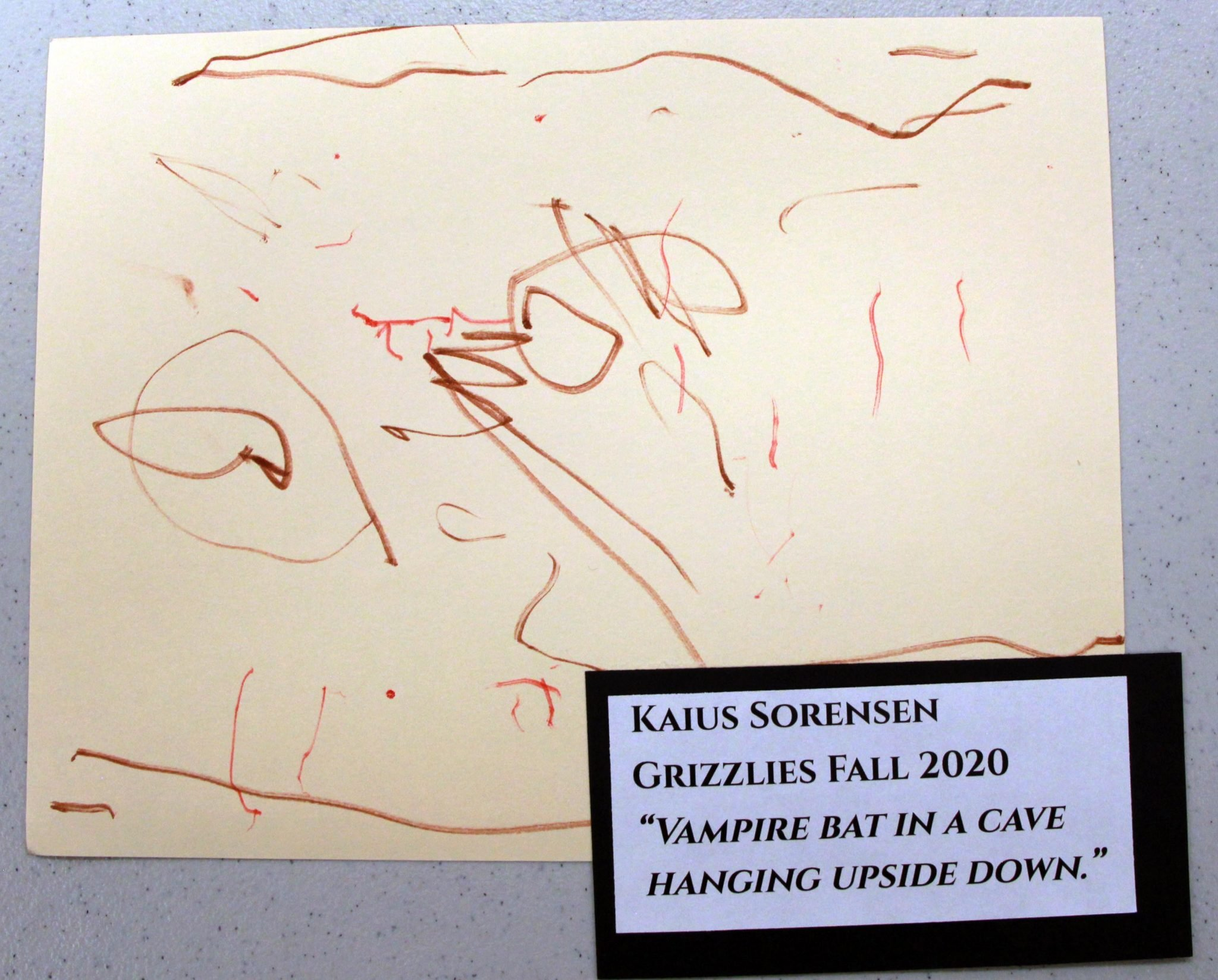 Kaius Sorensen, of Grizzlies group, drawing, Fall 2020