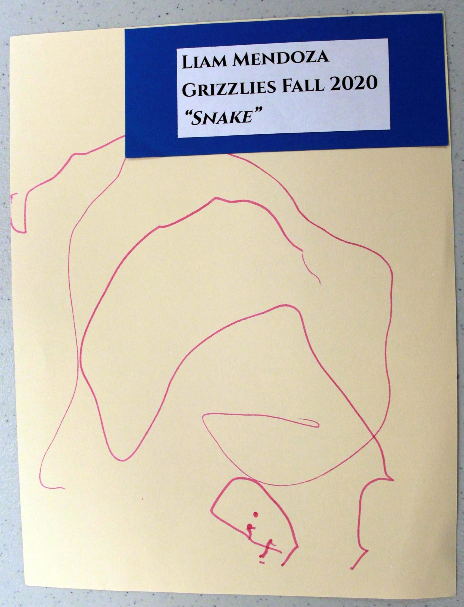 Liam Mendoza, of Grizzlies group, drawing, Fall 2020