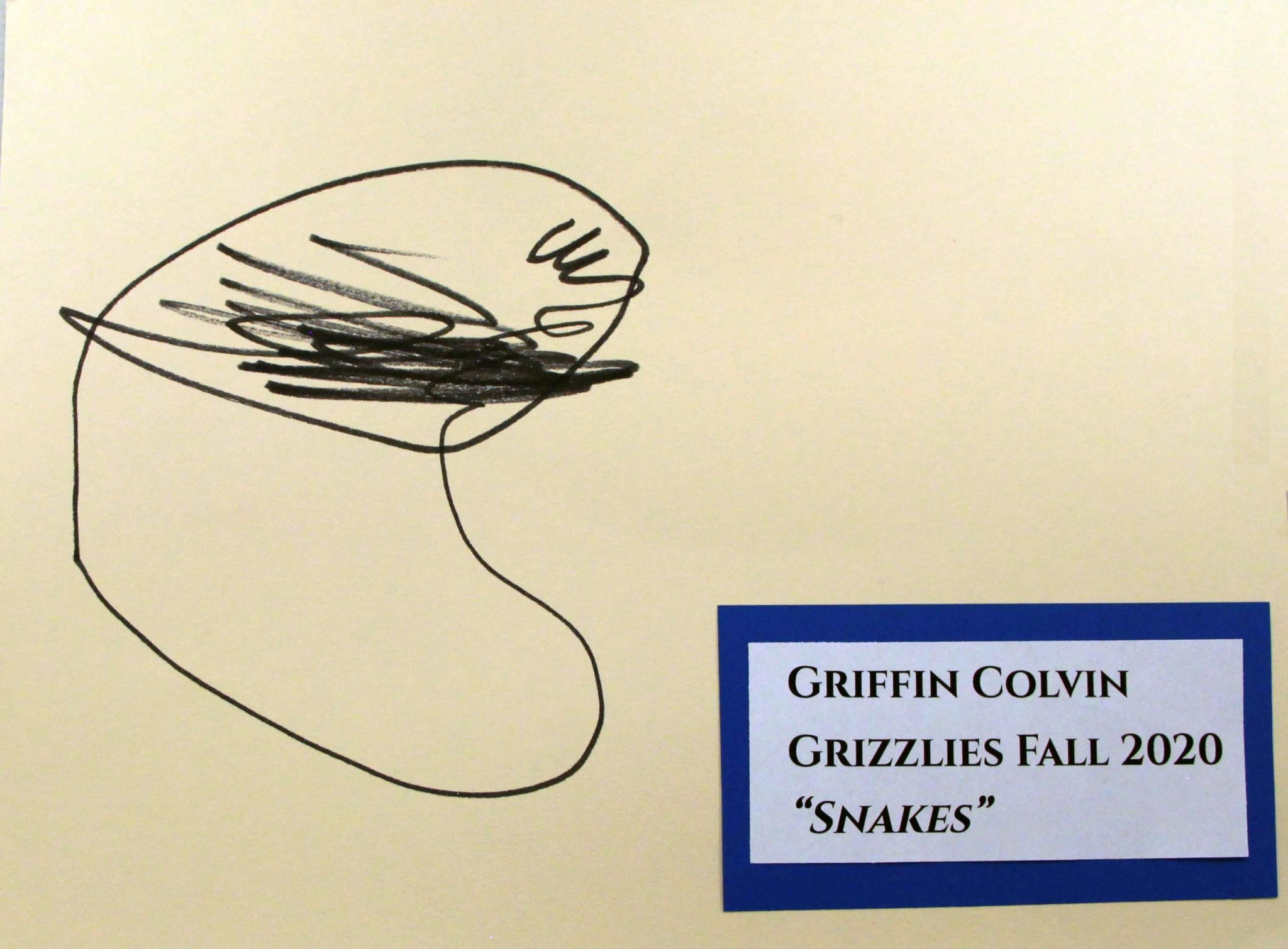 Griffin Colvin, of Grizzlies group, drawing, Fall 2020