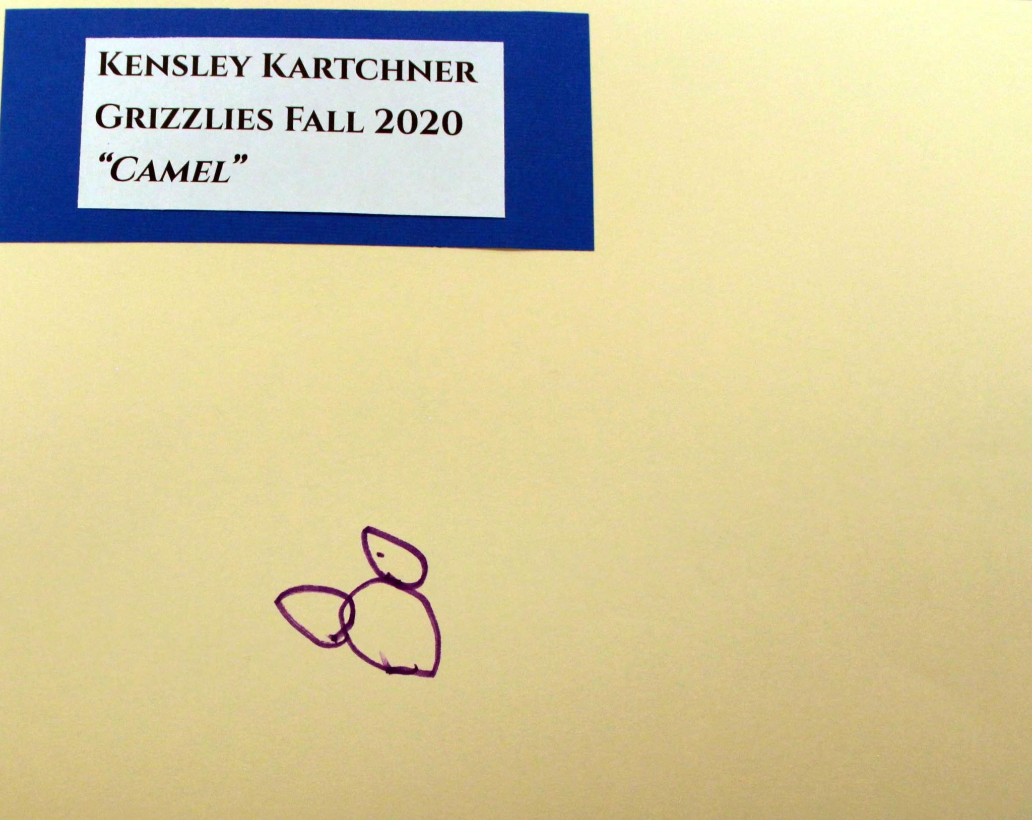 Kensley Kartchner, of Grizzlies group, drawing, Fall 2020