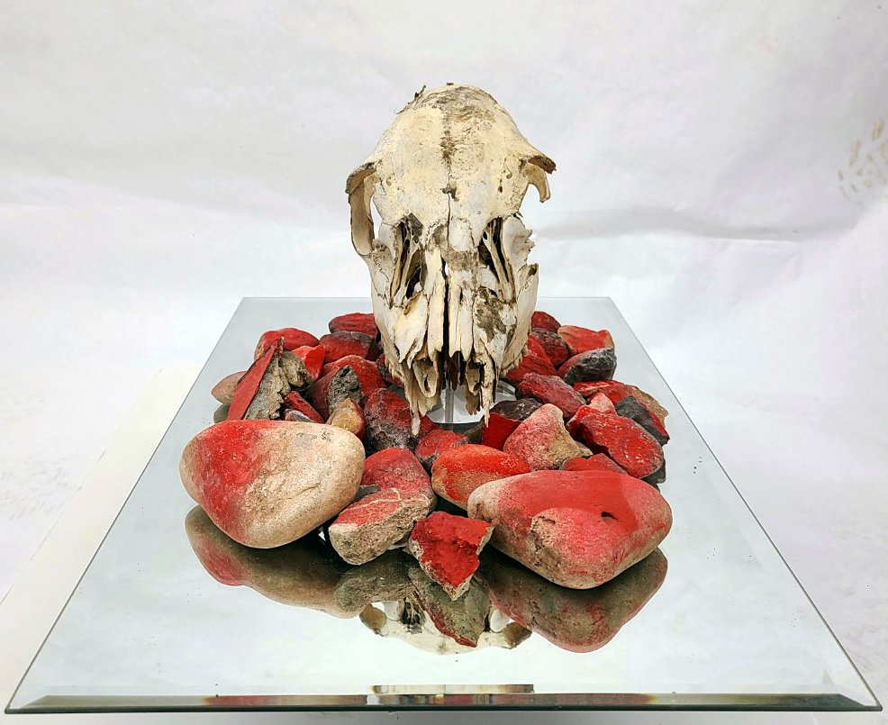 3 dimensional artwork made of an old mirror, rocks painted red, and a deer skill found in the desert